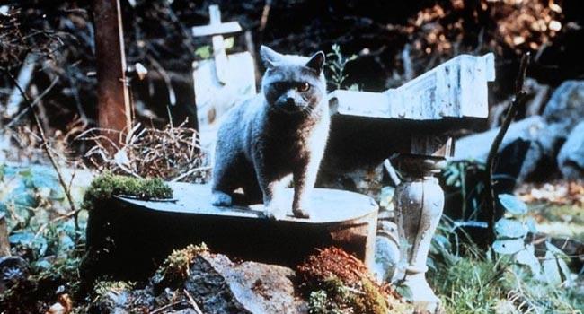 Кладбище домашних животных, страшные фильмы.