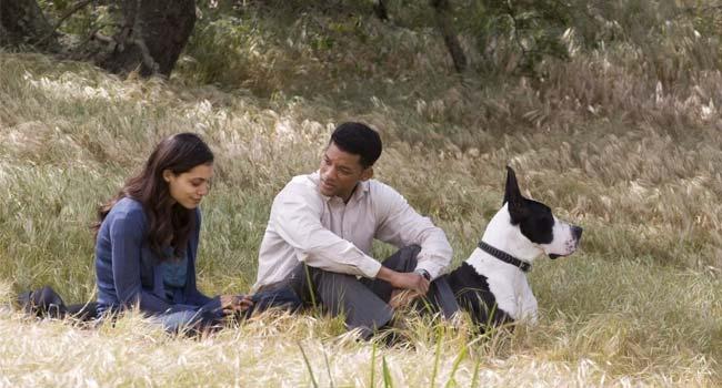 Семь жизней - Какой фильм посмотреть?