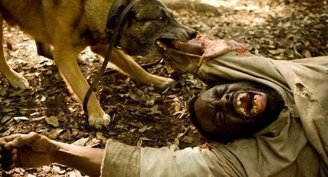 Джанго освобожденный - Какой фильм посмотреть про рабов?