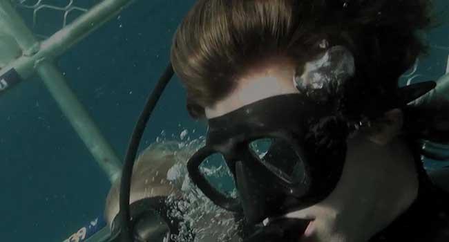 Над глубиной: Хроника выживания - Страшные фильмы про акул