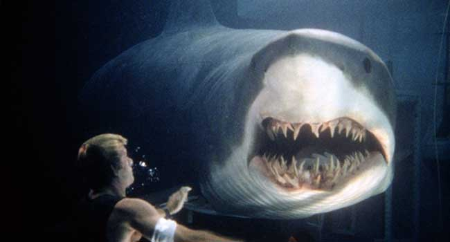 Глубокое синее море. Страшные фильмы про акул