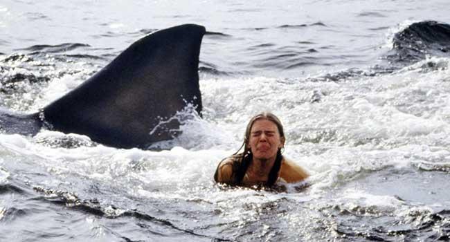 Страшные фильмы про акул