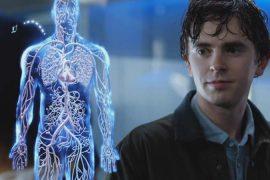 Хороший доктор - Наиболее рейтинговые сериалы 2017 года