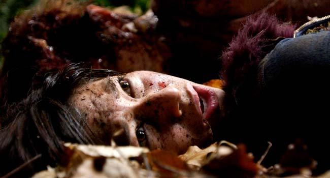 Грибы — 100 фильмов с непредсказуемой развязкой